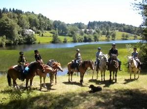 Wanderreiten im Schwarzwald