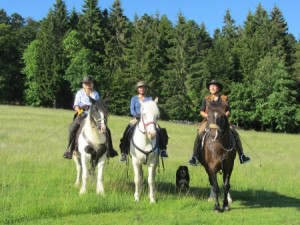 bluemountain-horse-trekking.de