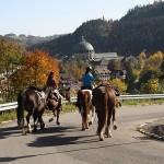 Wanderreiten von Todtmoos nach St. Blasien