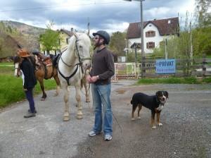 Reitferien, Pferdetrekking ab Todtmoos Au