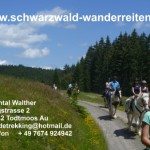 www.pferde-trekking.ch