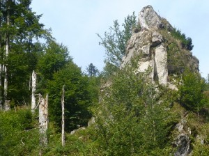 Wehratal - Todtmoos