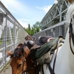 Überquerung des Rheins