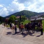 Pferdetrekking, Wanderreiten für Erwachsene