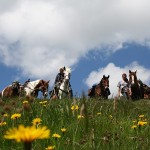 Todtmoos Au - Elsass - Vogesen