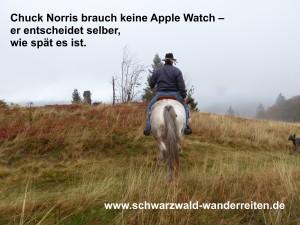 Chuck Norris braucht keine Apple Watch