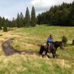Pferdetrekking ab Todtmoos Au