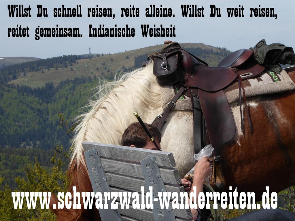 Wanderreiten ab Todtmoos Au rund um den Feldberg Schwarzwald