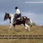 Henry Ford und Knoblauch
